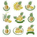 Pineapple labels and elements set. Vector Royalty Free Stock Photo
