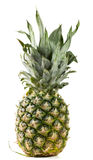 Pineapple with leaves isolated on white background Royalty Free Stock Photography