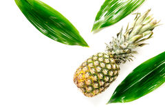 Pineapple and leaves on white background top view copyspace Royalty Free Stock Images