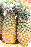 Pineapple for making offerings Royalty Free Stock Images