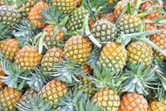 Pineapple in market, Bangkok, Thailand. Royalty Free Stock Images