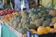 Pineapple Market Display Stock Images