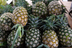 Pineapple at market Royalty Free Stock Images