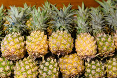 Pineapple at market Stock Photos