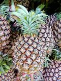 Pineapple in market Royalty Free Stock Photos