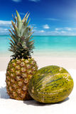 Pineapple and Melon Fruit on the tropical beach Royalty Free Stock Photo