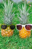 Pineapple mood. Two pineapples in sunglasses on the background of green grass. stock image