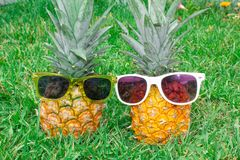 Pineapple mood. Two pineapples in sunglasses on the background of green grass. royalty free stock photo