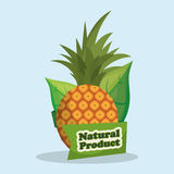 pineapple natural product market label Stock Photography