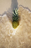 Pineapple in ocean waves Royalty Free Stock Image