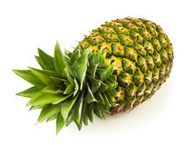 Pineapple one Stock Photo