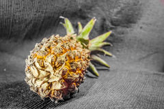 Pineapple. One whole pineapple photographed on a white background stock photography