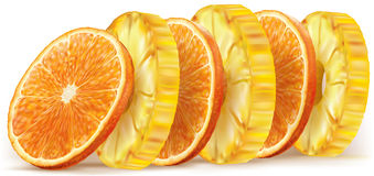 Pineapple and orange fruit slices Royalty Free Stock Image