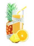 Pineapple-orange juice Stock Image