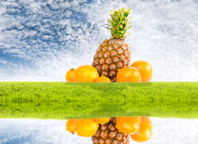 Pineapple and oranges on nature idyllic background Stock Photos