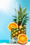 Pineapple with oranges and tubules Royalty Free Stock Photo
