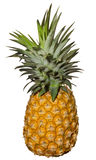 Pineapple Over White Royalty Free Stock Photo