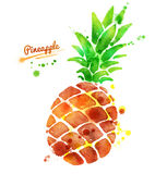Pineapple with paint splashes Royalty Free Stock Photography