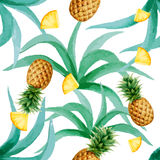 Pineapple pattern Royalty Free Stock Images