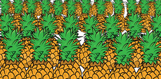 Pineapple pattern Stock Images