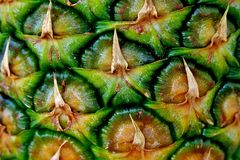 Pineapple peel, ripe, juicy and healthy fruit close-up stock image