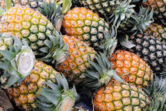 Pineapple. Pile of fresh tropical pineapple fruit Royalty Free Stock Images