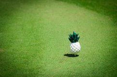 Pineapple Pin on green fields Royalty Free Stock Photos