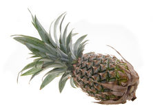 Pineapple, Pineapple tropical fruit on background Stock Photos
