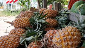 Pineapple. The pineapple is a tropical plant with an edible multiple fruit consisting of coalesced berries, also called pineapples, and the most economically Stock Photo