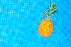 Pineapple and pool. Pineapple floating in water of tiled pool Stock Photography