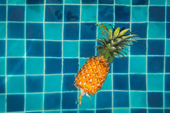 Pineapple in the pool Royalty Free Stock Images