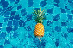 Pineapple in the pool Stock Images