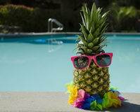 Pineapple by the pool. Funny pineapple in sunglasses by the pool Royalty Free Stock Photo