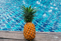 Pineapple at the pool Royalty Free Stock Photo