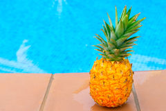 Pineapple and pool Royalty Free Stock Photo