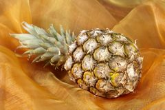 Pineapple - Popart. A laying pineapple exempted on a colorful background (like popart royalty free stock image