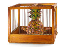 Pineapple, prisoner in the cage. Pineapple, prisoner in the cage made of wood with iron rods, isolated stock images
