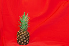 Pineapple. On a red textile background Stock Photos