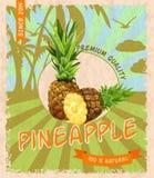 Pineapple retro poster Royalty Free Stock Photos