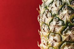 Pineapple rind close up. clearly visible texture of the skin. Space for text royalty free stock image
