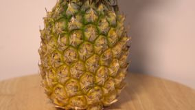 The pineapple rotate on the turntable. The pineapple sections rotate on the turntable stock video