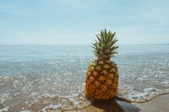 Pineapple in sea Stock Photos