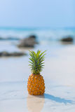 Pineapple on sea background. Pineapple on the beach on blue sea background Royalty Free Stock Photography