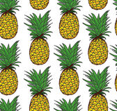 Pineapple seamless vector pattern Stock Photos