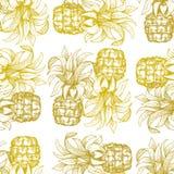 Pineapple seamless pattern. Hand drawn vector tropical fruit illustration. Engraved style ananas fruit. Retro botanical background. Pineapple seamless pattern vector illustration