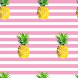 Pineapple seamless pattern. summer pattern on a stripy background. Summer tropical fruit pattern. exotic fruit hand drawn Stock Photos