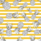 Pineapple seamless pattern. summer pattern on a stripy background. Summer tropical fruit pattern. exotic fruit hand drawn Stock Image