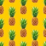 Pineapple seamless pattern Stock Photo