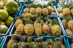 Pineapple for Sell Stock Photography