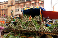 Pineapple seller sells fruits on the outdoor market Royalty Free Stock Image